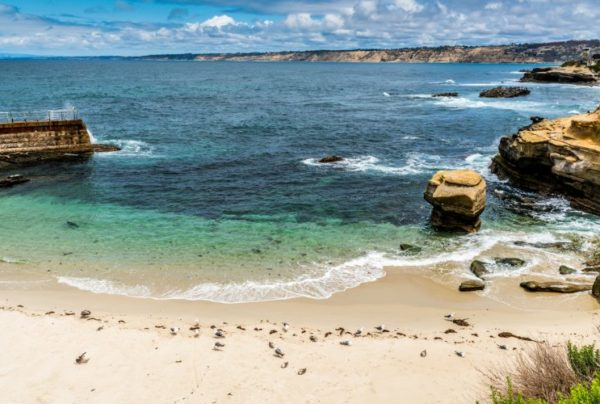 Image of La Jolla Beach with cliffs over blue water and white sand