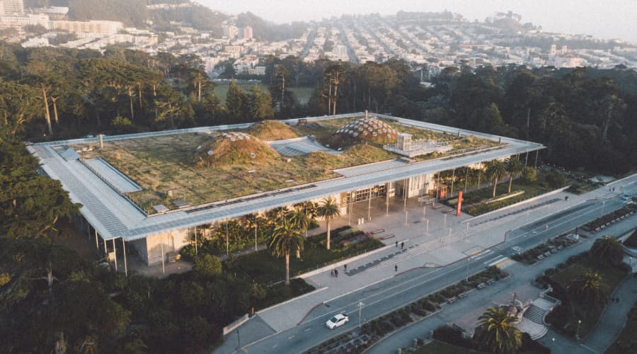aerial view of the California Academy of Science rooftop greenspace