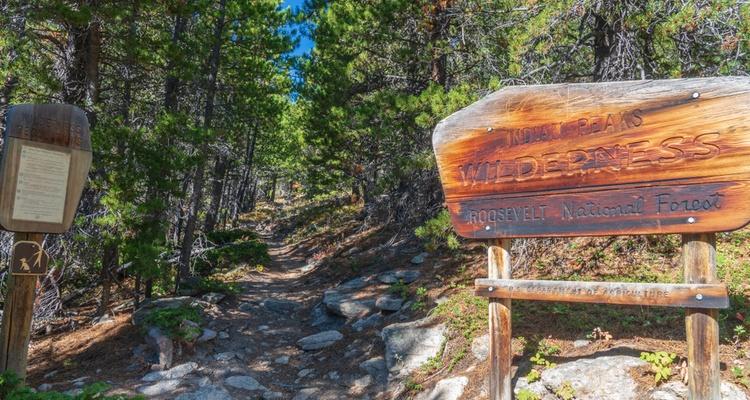 champion charter bus roosevelt national forest indian peaks wilderness denver