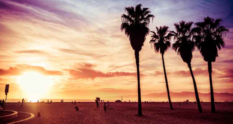 venice beach itinerary